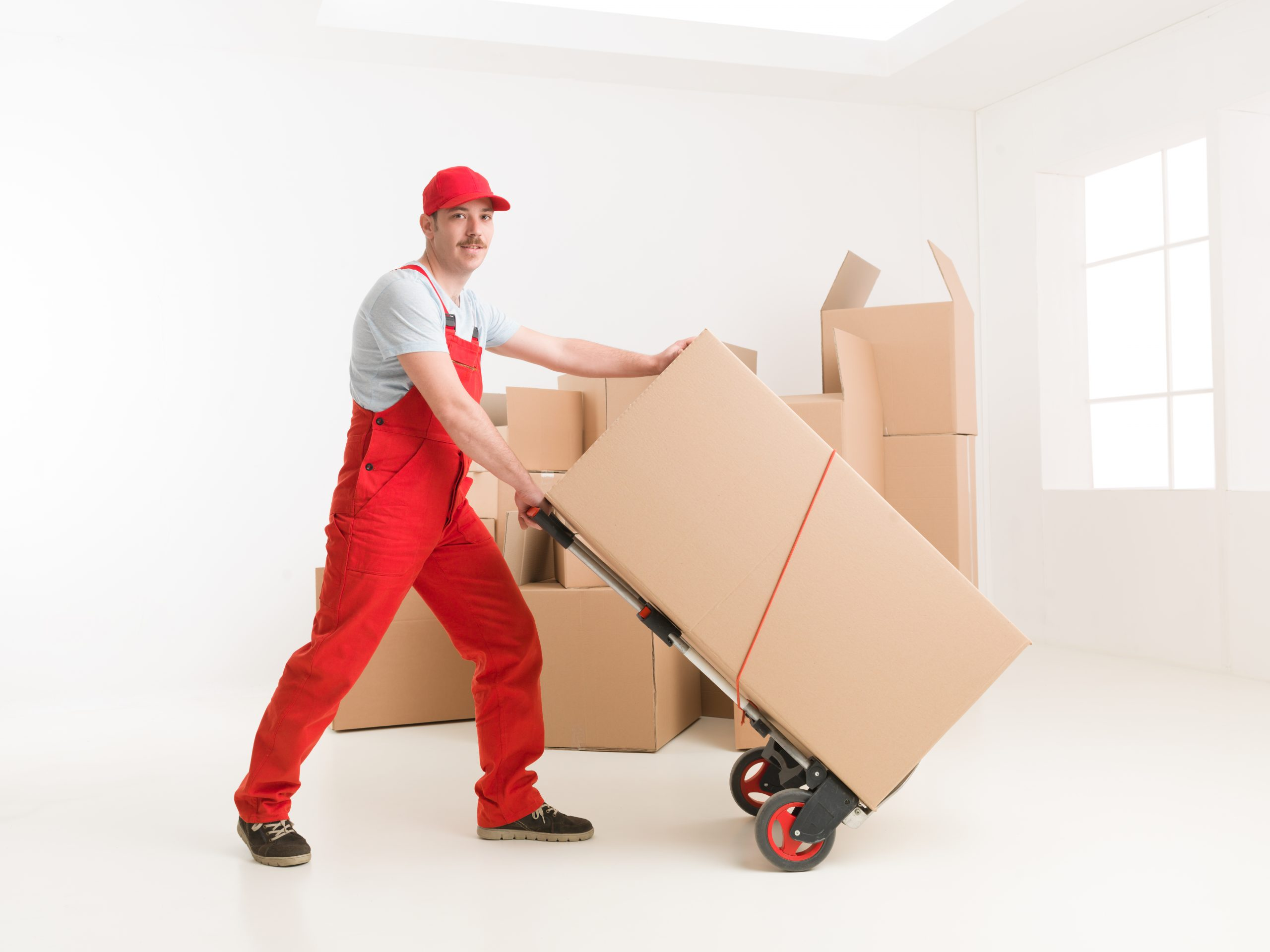 Move Wherever You Want with Olympic Moving.